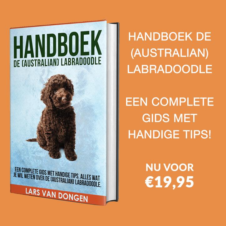 Bestel het boek Labradoodle geheimen nu!